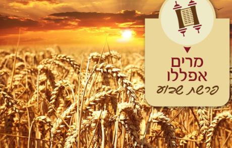 מרים אפללו : בשדה ובבית קבלת התורה בחיים