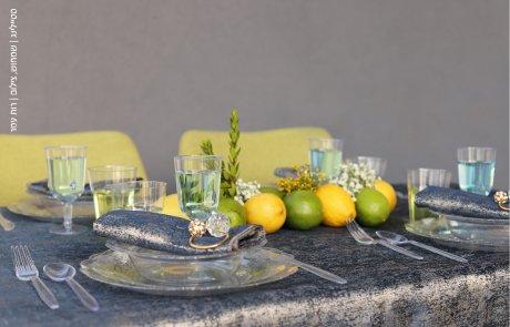 שמחוש מגישה: הפקת חג מיוחדת בשיתוף חברת 'הנמל' ו'שולחן ערוך'