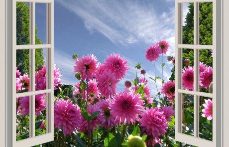 הי.. טפחי את הגינה שלך,  באהבה..