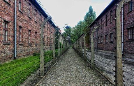 בטח כבר שאלו אותך על זה בעבודה…את השואה איך אנחנו זוכרים?