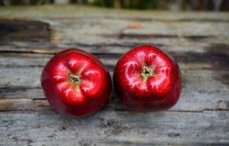 עם ישראל נמשלו לתפוח ובכך מכונים עם סגולה, בפורים הזמן מסוגל כל כך! אספנו לכן לקט סגולות מיוחדות לפורים …