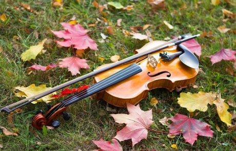מיתרי המצפון היהודי, הכינור