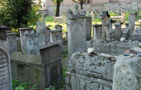 """ד""""ש מפולין: מה שלמדתי מההיסטוריה היהודית של קראקא/ לאה ברוקמן"""