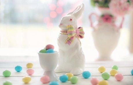 """הארנב שהקשיב / ד""""ר רונית לזר"""