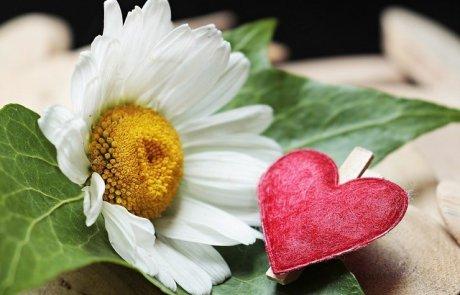 אוכלת את הלב? אולי תלמדי לומר תודה!