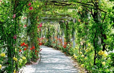 תשאירו את הארנק בבית- וצאו לטייל בפארקים חינמיים