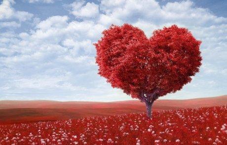 אהבה עצמית (א)